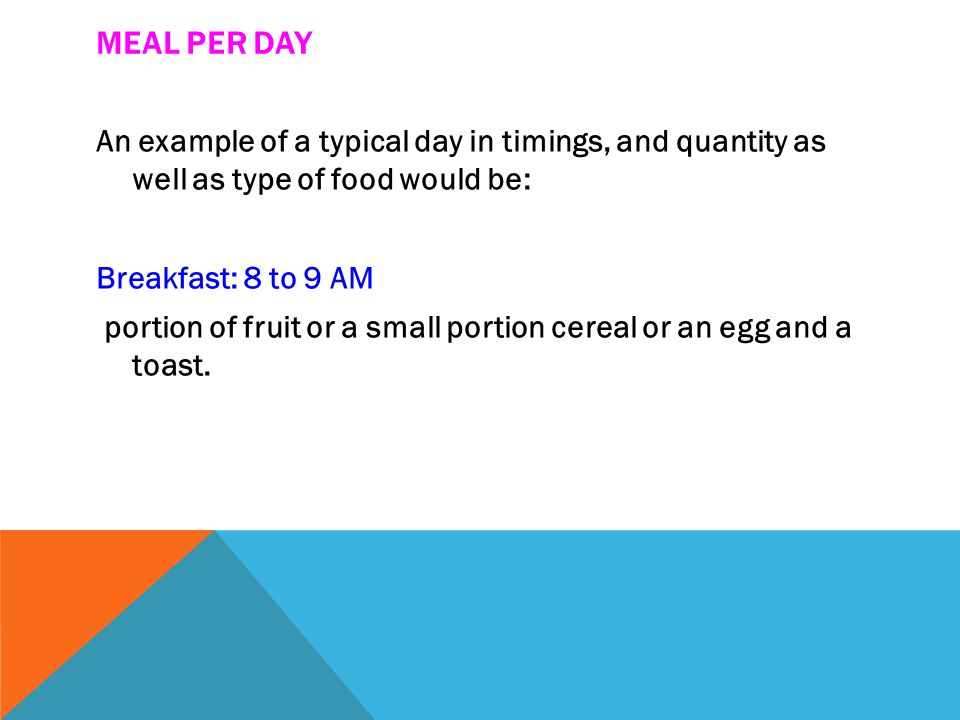 MEAL PER DAY An example of a typical day in timings, and quantity as well as type of food would be: Breakfast: 8 to 9 AM portion of fruit or a small portion cereal or an egg and a toast.