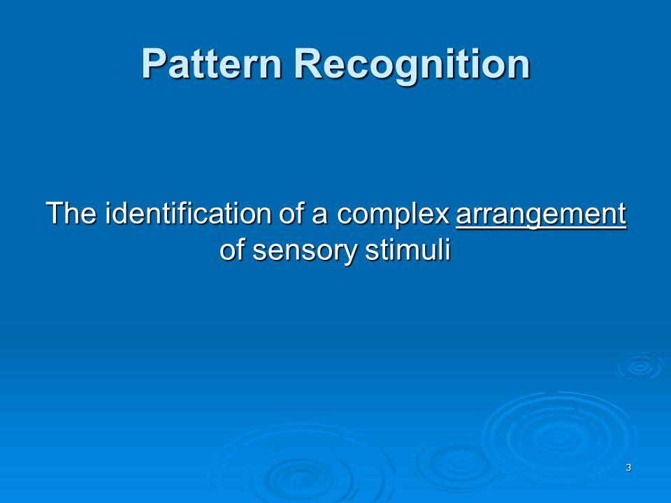 64 Diagnostic Criteria for Automatic Processes