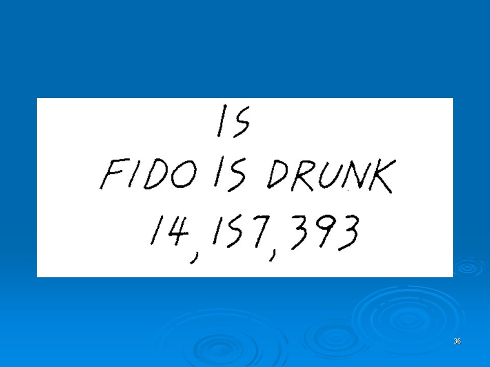 36 Fido is Drunk