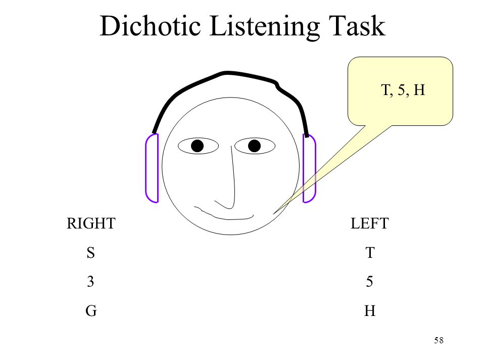 58 Dichotic Listening Task T, 5, H LEFT T 5 H RIGHT S 3 G