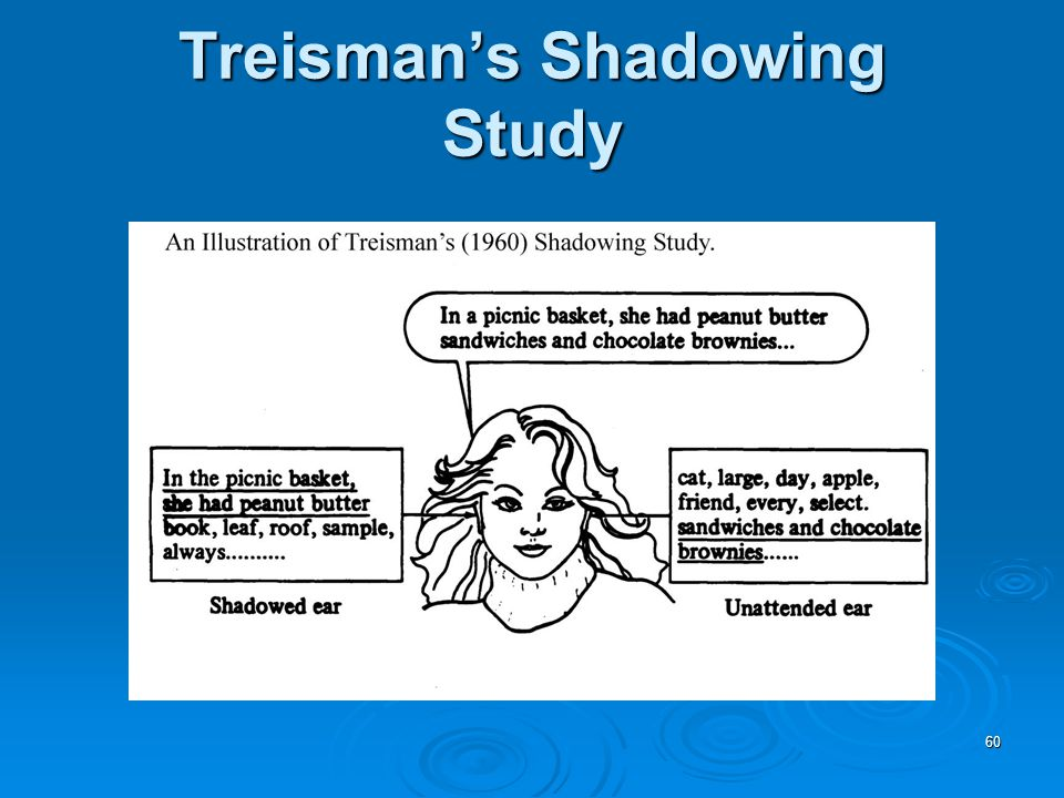 60 Treisman's Shadowing Study