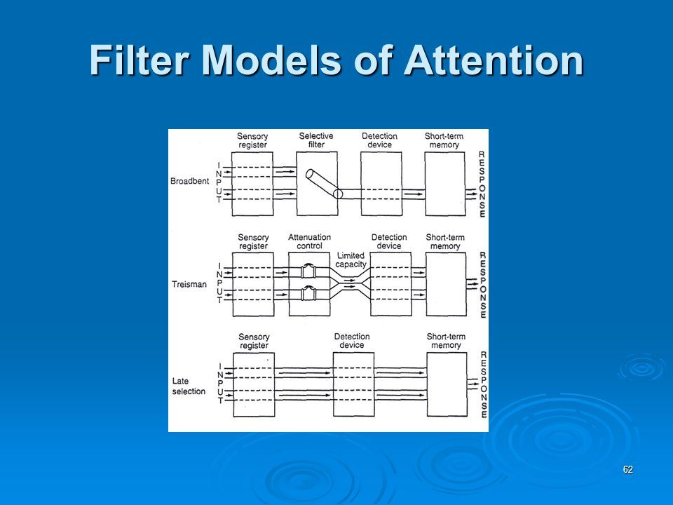 62 Filter Models of Attention