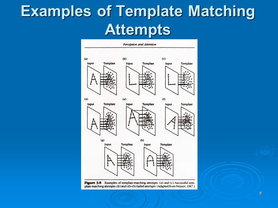 9 Examples of Template Matching Attempts