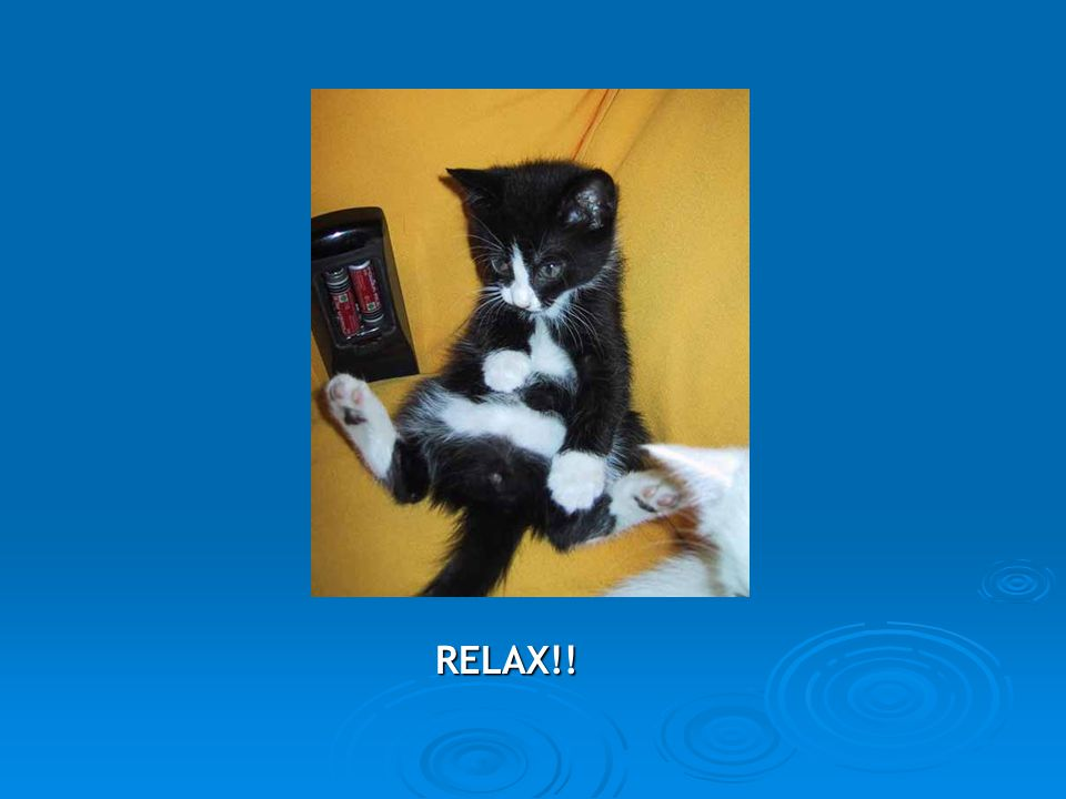 RELAX!!