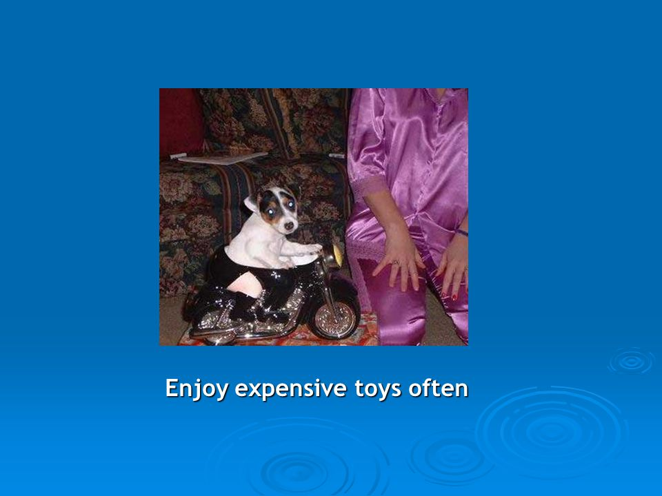 Enjoy expensive toys often