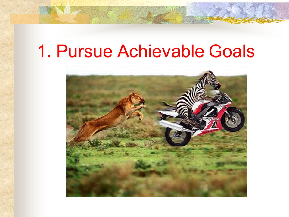 1. Pursue Achievable Goals