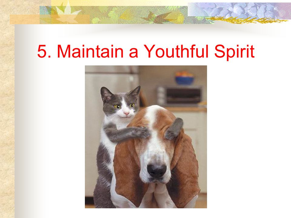 5. Maintain a Youthful Spirit