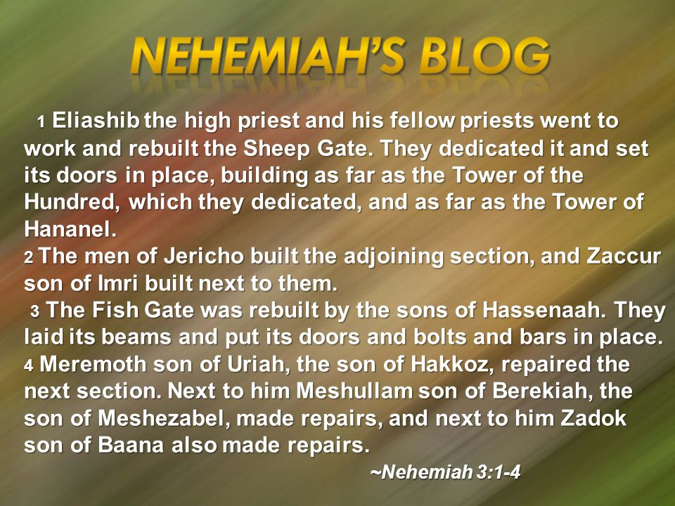 1 Eliashib the high priest and his fellow priests went to work and rebuilt the Sheep Gate.