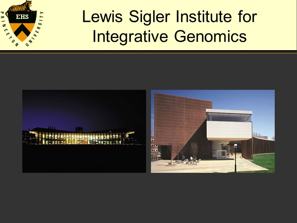Lewis Sigler Institute for Integrative Genomics