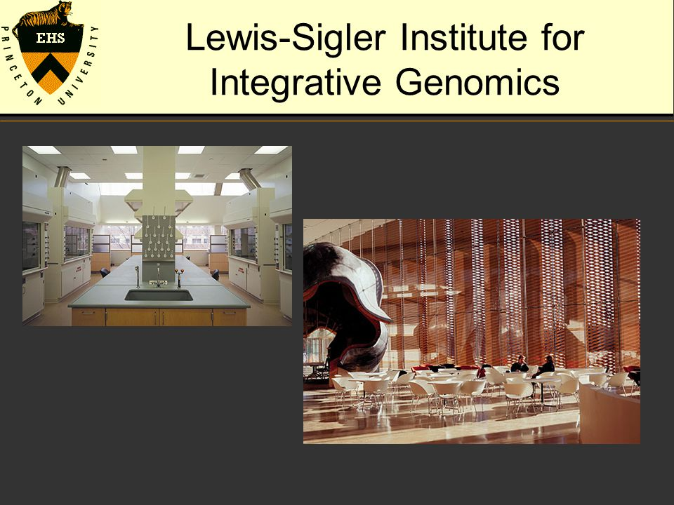 Lewis-Sigler Institute for Integrative Genomics