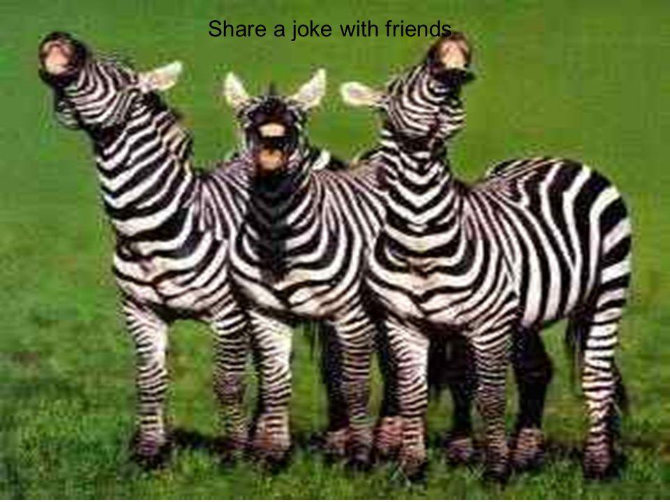 Share a joke with friends