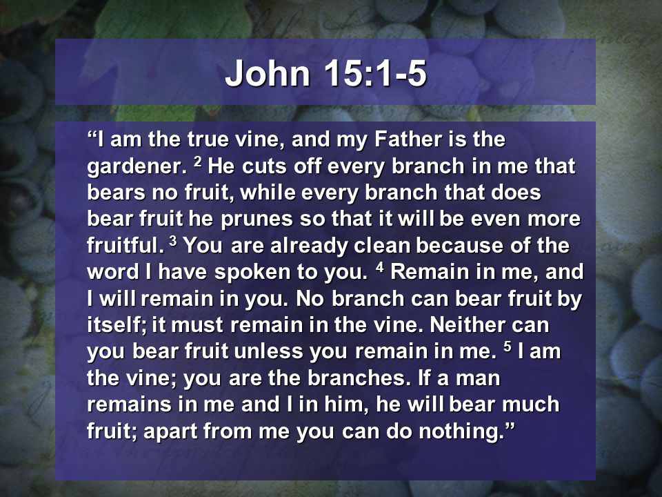 John 15:1-5 I am the true vine, and my Father is the gardener.