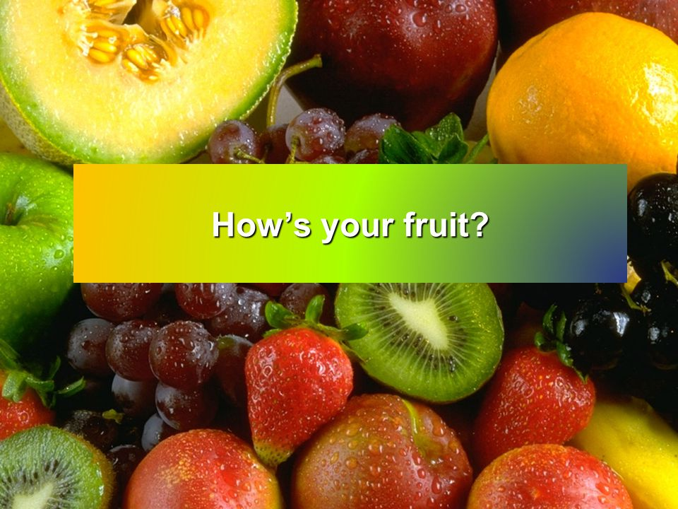 How's your fruit