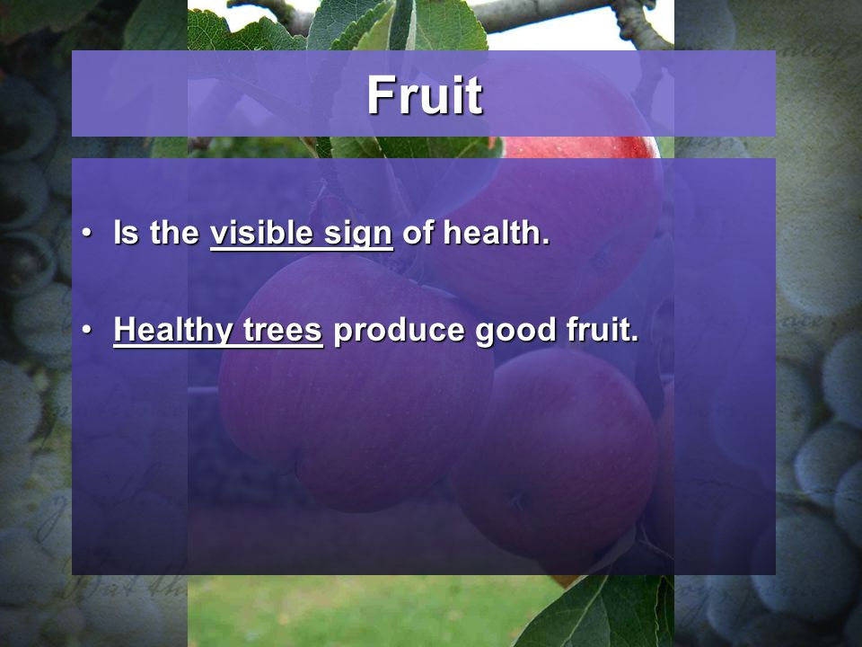 Fruit Is the visible sign of health.Is the visible sign of health.
