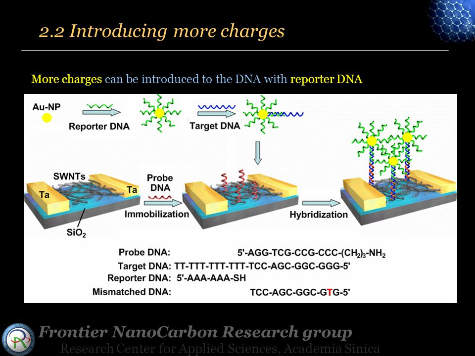 Frontier NanoCarbon Research group Research Center for Applied Sciences, Academia Sinica More charges can be introduced to the DNA with reporter DNA 2.2 Introducing more charges