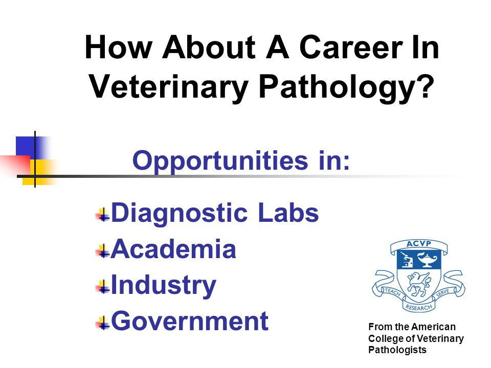 Careers in Industry Type of activities (cont.)  Lead optimization  Assist in selection of best compound/product in a series, based on pathologic parameters  Research  Characterize animal models of diseases  Including transgenics and knockouts  Assess efficacy in animal models  Compound/product sponsorship  Participate in multidisciplinary development teams