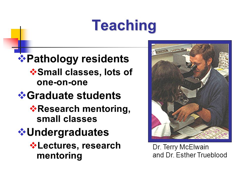 Teaching  Pathology residents  Small classes, lots of one-on-one  Graduate students  Research mentoring, small classes  Undergraduates  Lectures, research mentoring Dr.