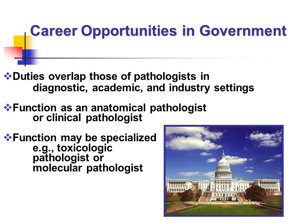  Duties overlap those of pathologists in diagnostic, academic, and industry settings  Function as an anatomical pathologist or clinical pathologist  Function may be specialized e.g., toxicologic pathologist or molecular pathologist Career Opportunities in Government