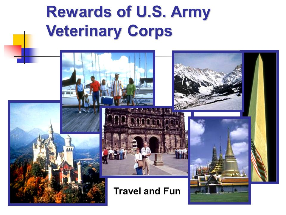 Travel and Fun Rewards of U.S. Army Veterinary Corps