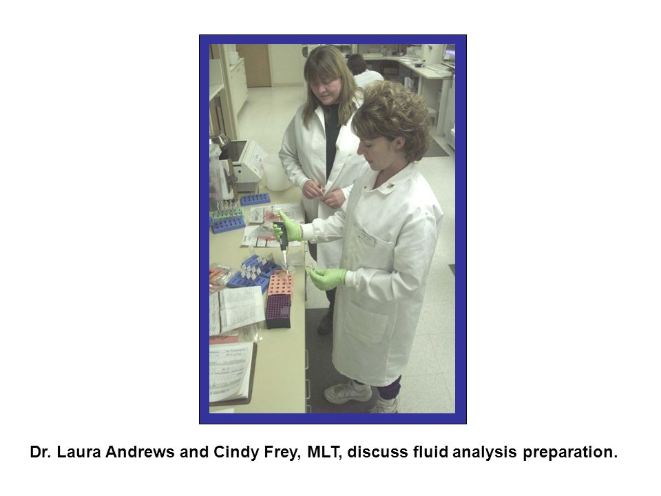 Veterinary pathologists at Colorado State Diagnostic Lab are studying Chronic Wasting Disease in deer and elk, a disease that has spread to several states.