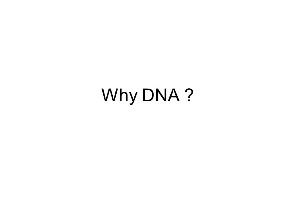 Why DNA