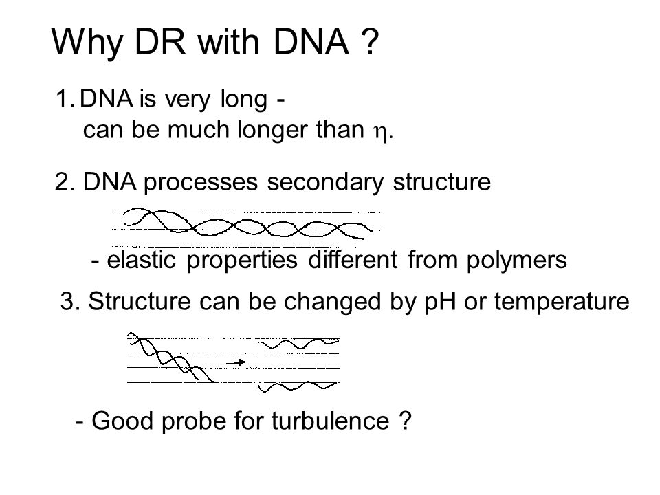 Why DR with DNA .1.DNA is very long - can be much longer than  2.