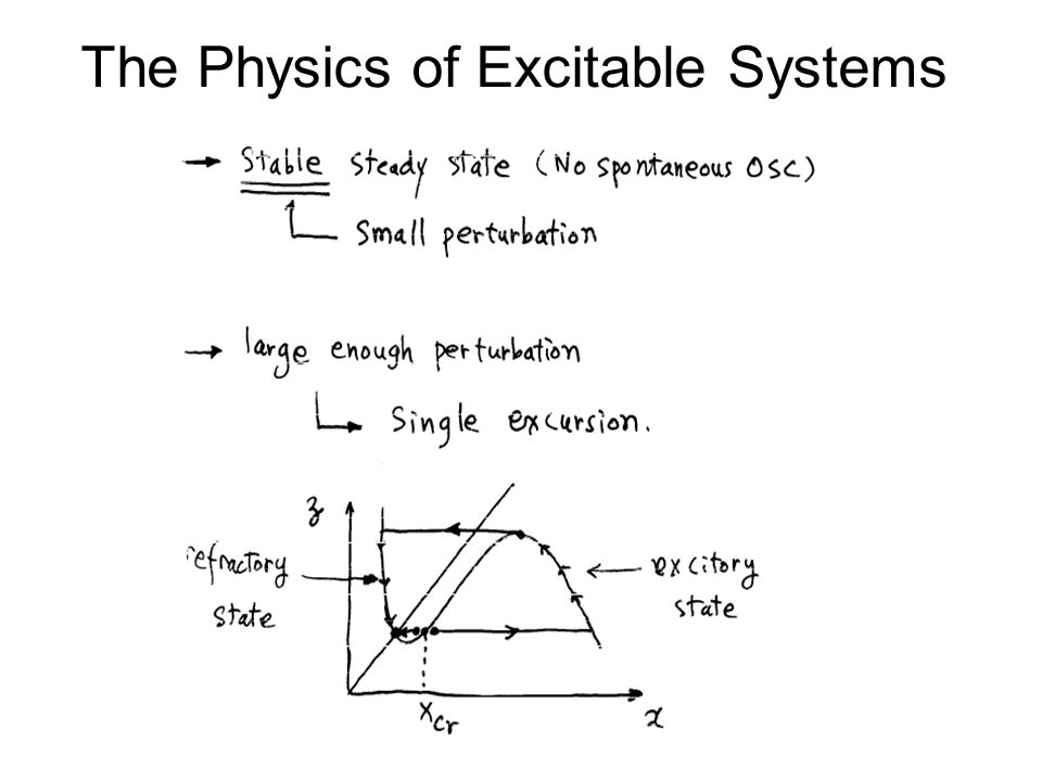 The Physics of Excitable Systems