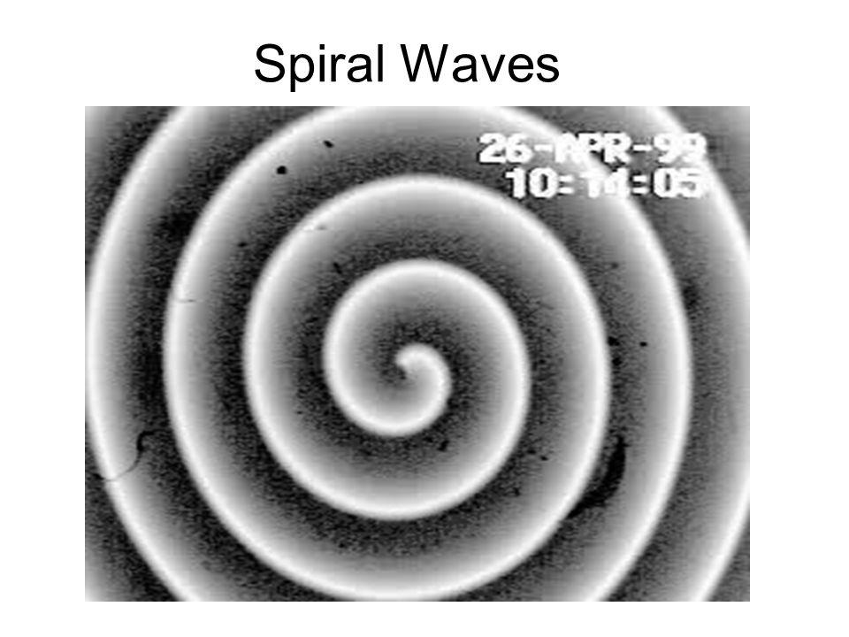 Spiral Waves