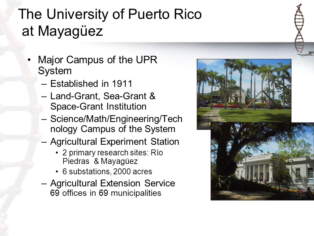 Academia Collaboration & specialization within UPR & between UPR & private universities, particularly in applied research, Ph.D.