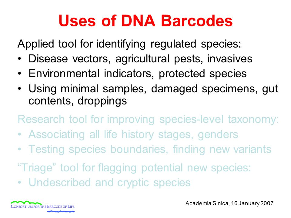 Academia Sinica, 16 January 2007 Uses of DNA Barcodes Applied tool for identifying regulated species: Disease vectors, agricultural pests, invasives E
