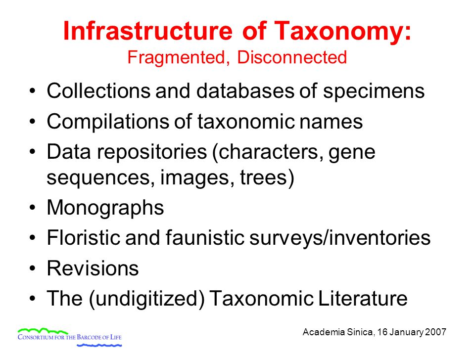 Academia Sinica, 16 January 2007 Infrastructure of Taxonomy: Fragmented, Disconnected Collections and databases of specimens Compilations of taxonomic