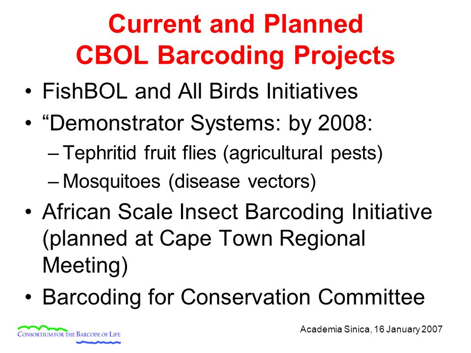 Academia Sinica, 16 January 2007 Current and Planned CBOL Barcoding Projects FishBOL and All Birds Initiatives Demonstrator Systems: by 2008: –Tephritid fruit flies (agricultural pests) –Mosquitoes (disease vectors) African Scale Insect Barcoding Initiative (planned at Cape Town Regional Meeting) Barcoding for Conservation Committee