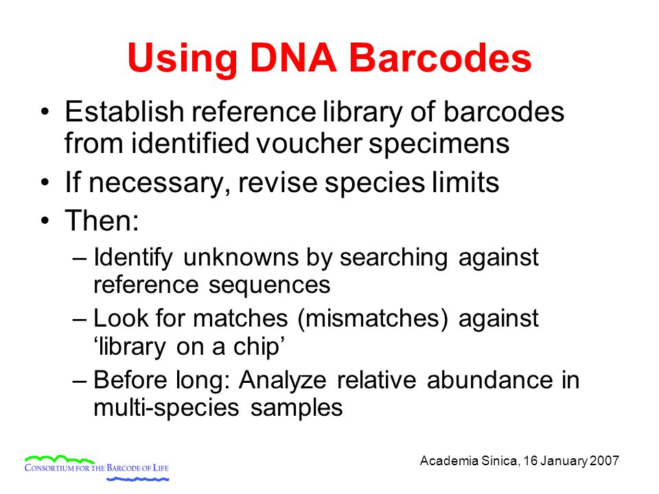 Academia Sinica, 16 January 2007 Using DNA Barcodes Establish reference library of barcodes from identified voucher specimens If necessary, revise species limits Then: –Identify unknowns by searching against reference sequences –Look for matches (mismatches) against 'library on a chip' –Before long: Analyze relative abundance in multi-species samples