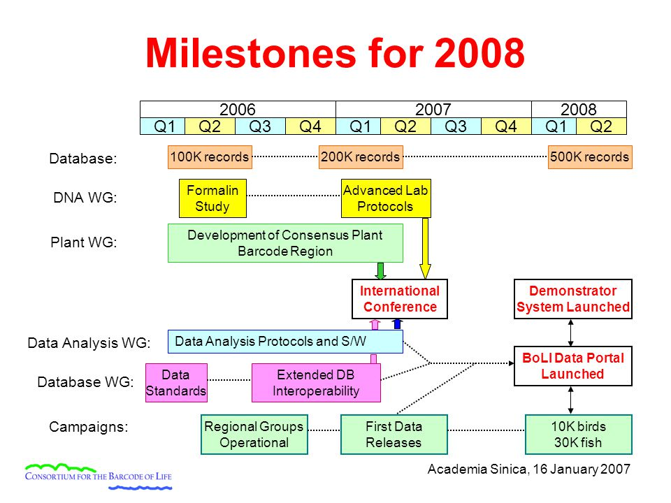 Academia Sinica, 16 January 2007 Milestones for 2008 200720082006 Q1Q2Q3Q4Q1Q2Q3Q4Q1Q2 International Conference Development of Consensus Plant Barcode Region Data Analysis Protocols and S/W Formalin Study Advanced Lab Protocols 200K records500K records100K records Demonstrator System Launched Database: Data Analysis WG: DNA WG: Plant WG: Database WG: Extended DB Interoperability BoLI Data Portal Launched Campaigns: Regional Groups Operational First Data Releases 10K birds 30K fish Data Standards