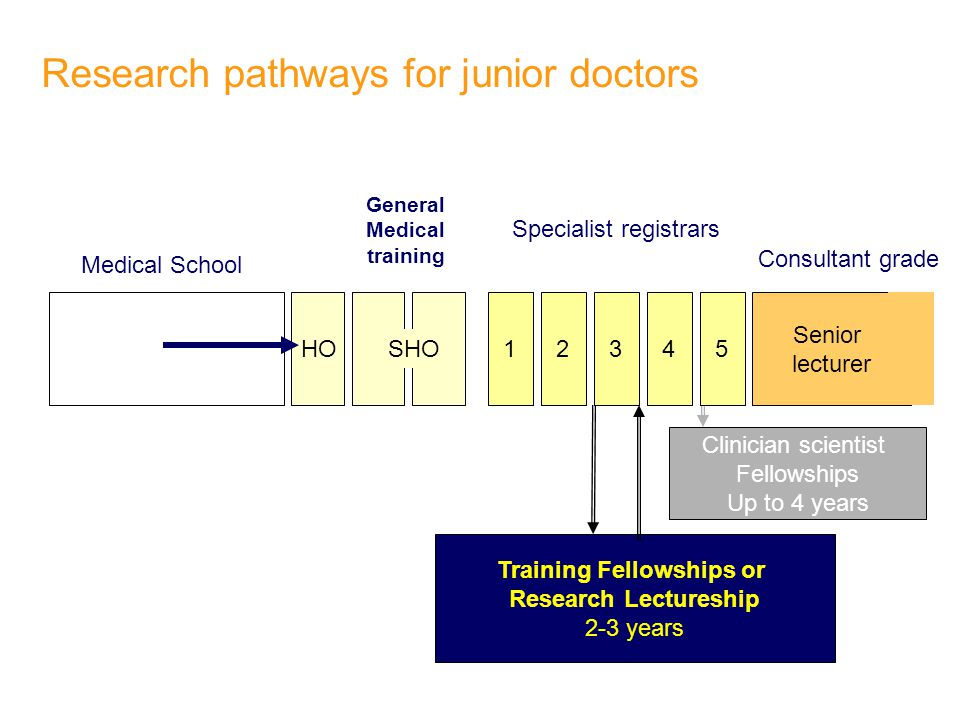 Research pathways for junior doctors 1 Senior lecturer Medical School General Medical training Consultant grade Clinician scientist Fellowships Up to 4 years HO 2345 Specialist registrars Training Fellowships or Research Lectureship 2-3 years SHO