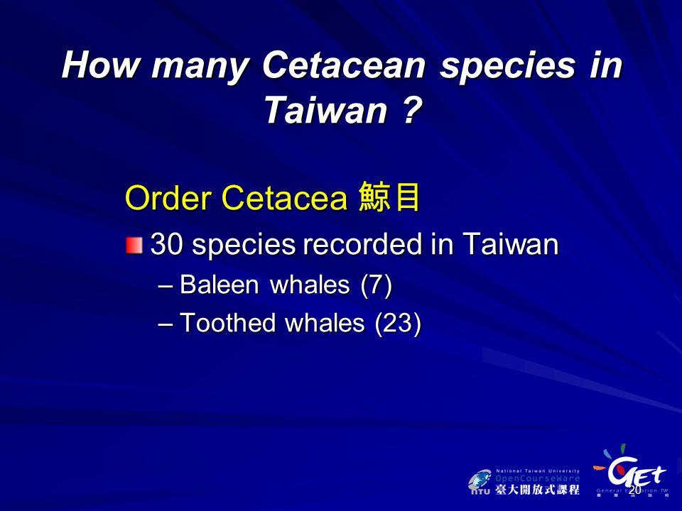 20 How many Cetacean species in Taiwan .