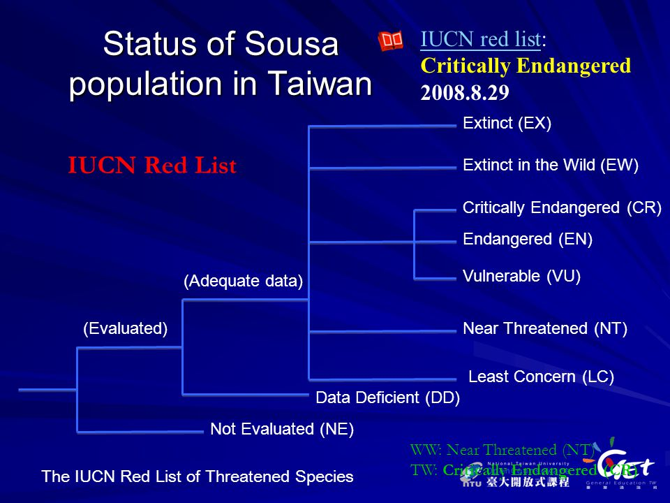 Status of Sousa population in Taiwan IUCN Red List IUCN red listIUCN red list: Critically Endangered 2008.8.29 Not Evaluated (NE) (Evaluated) Data Deficient (DD) (Adequate data) Extinct (EX) Extinct in the Wild (EW) Critically Endangered (CR) Endangered (EN) Vulnerable (VU) Near Threatened (NT) Least Concern (LC) WW: Near Threatened (NT) TW: Critically Endangered (CR) The IUCN Red List of Threatened Species