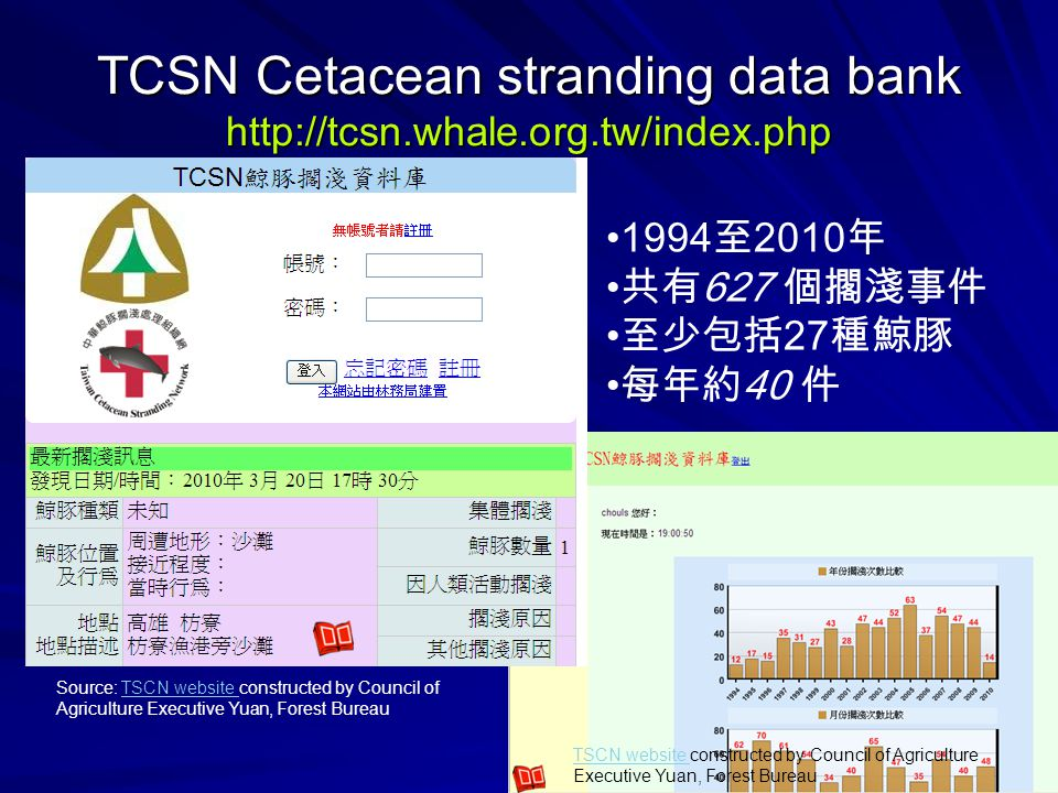 TCSN Cetacean stranding data bank http://tcsn.whale.org.tw/index.php 1994 至 2010 年 共有 627 個擱淺事件 至少包括 27 種鯨豚 每年約 40 件 Source: TSCN website constructed by Council of Agriculture Executive Yuan, Forest BureauTSCN website TSCN website constructed by Council of Agriculture Executive Yuan, Forest Bureau