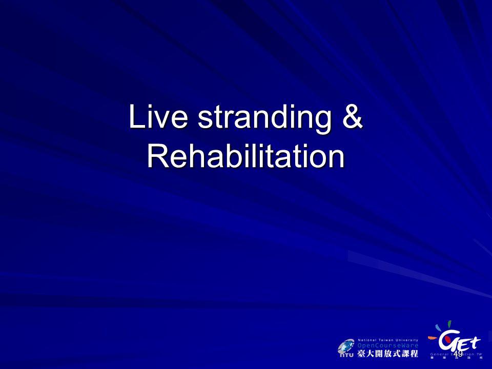 49 Live stranding & Rehabilitation