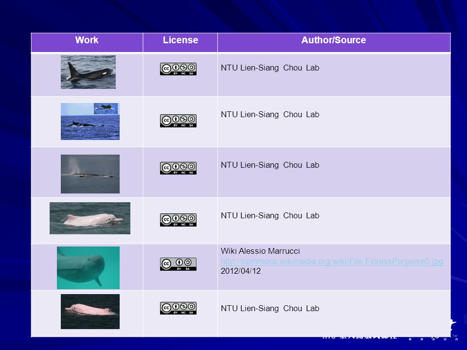 76 WorkLicenseAuthor/Source NTU Lien-Siang Chou Lab Wiki Alessio Marrucci http://commons.wikimedia.org/wiki/File:FinlessPorpoise5.jpg 2012/04/12 NTU Lien-Siang Chou Lab