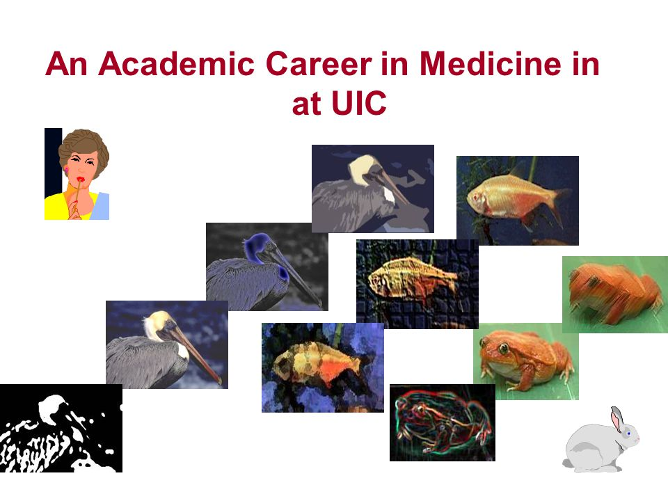 An Academic Career in Medicine in at UIC
