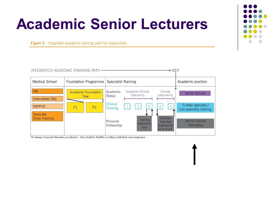 Academic Senior Lecturers