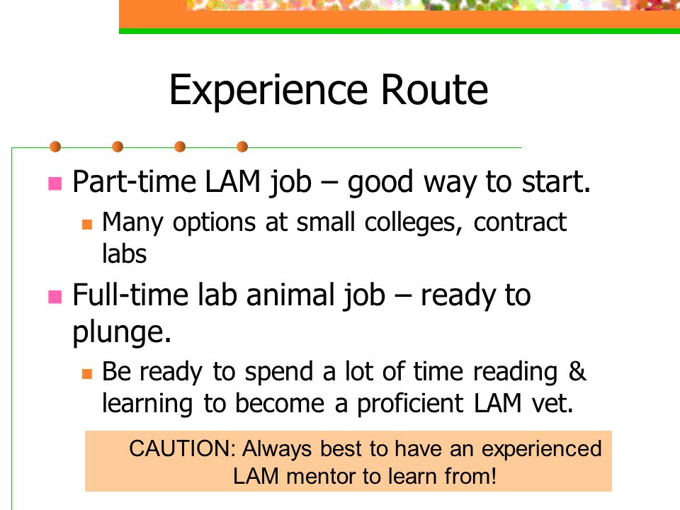 Experience Route Part-time LAM job – good way to start.