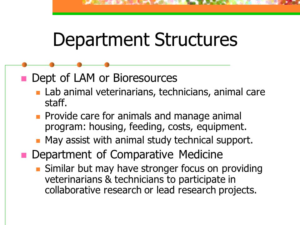 Department Structures Dept of LAM or Bioresources Lab animal veterinarians, technicians, animal care staff.