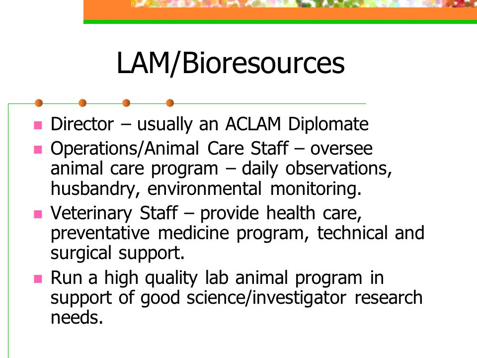 LAM/Bioresources Director – usually an ACLAM Diplomate Operations/Animal Care Staff – oversee animal care program – daily observations, husbandry, environmental monitoring.