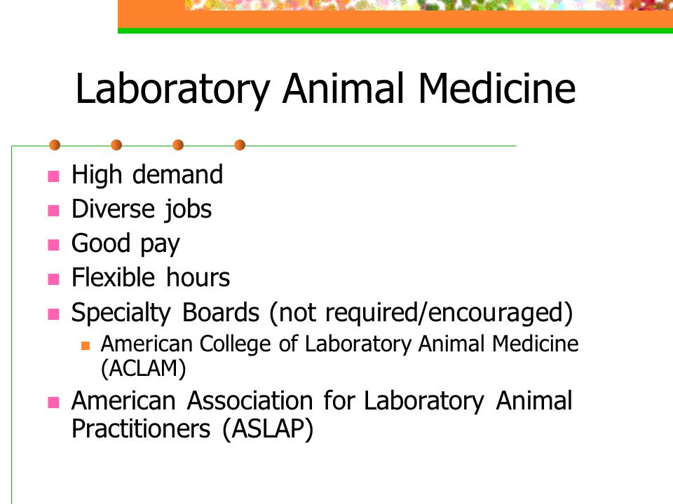 Laboratory Animal Medicine High demand Diverse jobs Good pay Flexible hours Specialty Boards (not required/encouraged) American College of Laboratory Animal Medicine (ACLAM) American Association for Laboratory Animal Practitioners (ASLAP)