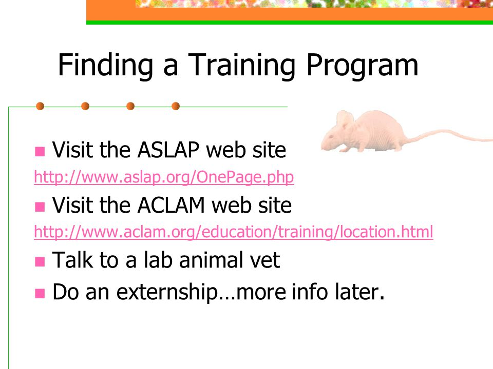 Finding a Training Program Visit the ASLAP web site http://www.aslap.org/OnePage.php Visit the ACLAM web site http://www.aclam.org/education/training/location.html Talk to a lab animal vet Do an externship…more info later.