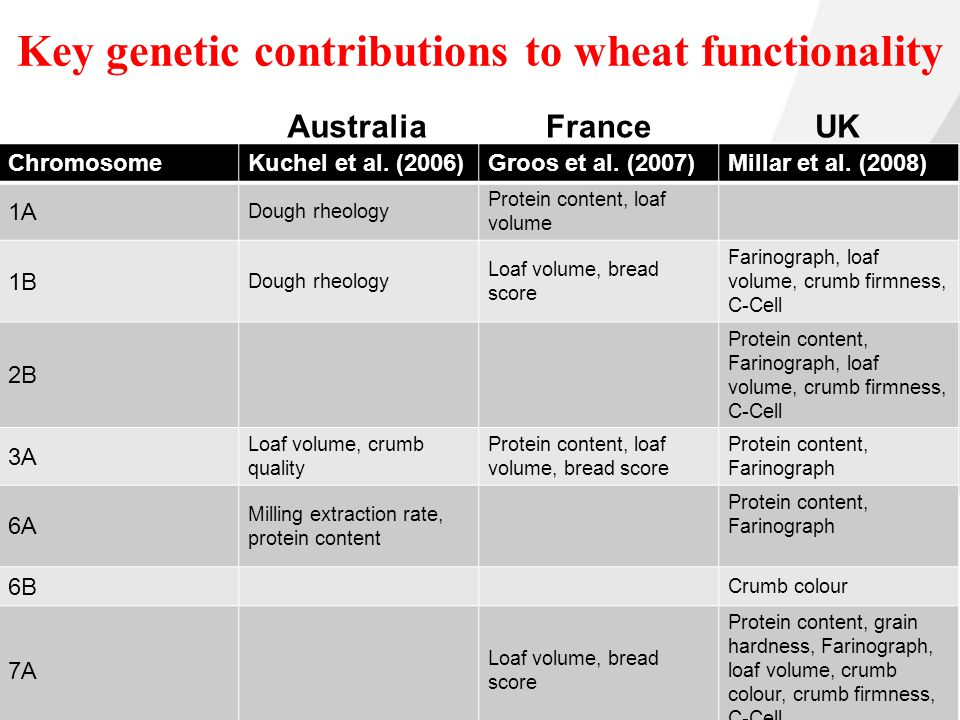 Campden BRI © Campden BRI Key genetic contributions to wheat functionality ChromosomeKuchel et al.