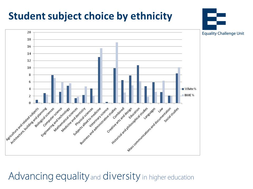 Student subject choice by ethnicity