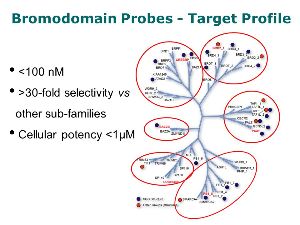 <100 nM >30-fold selectivity vs other sub-families Cellular potency <1µM Bromodomain Probes - Target Profile